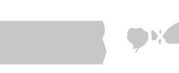 logo_silverfox